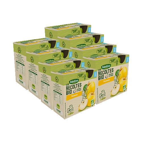 Pack Gourdes BIO Pommes